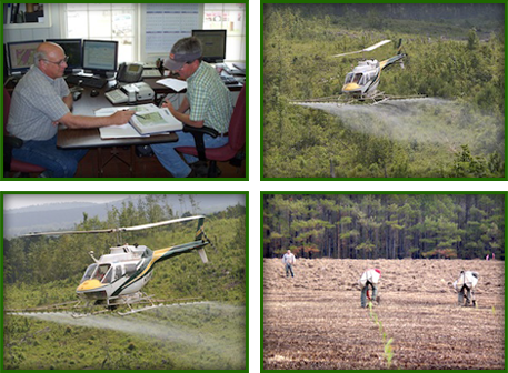 Managing Plans, Helicopters, and Planting